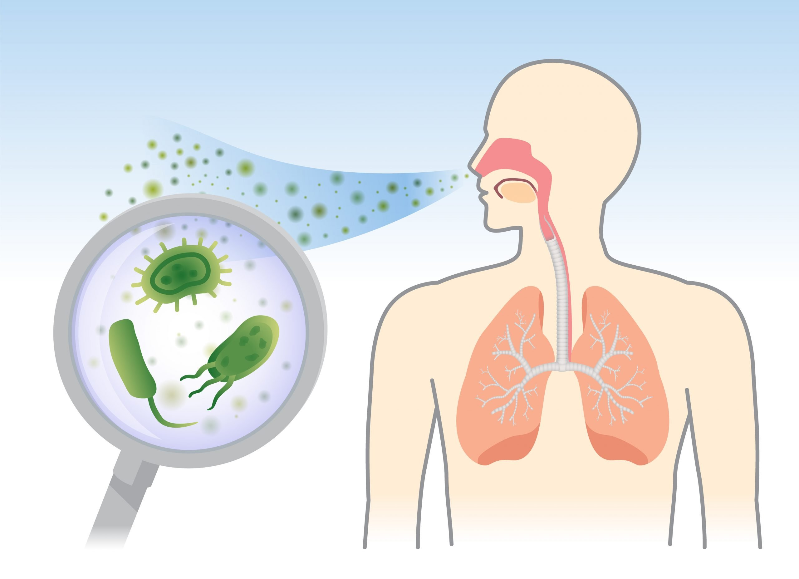 88931443 - looking bacteria and fungi into respiratory of human from breathe with magnifying glass. illustration about air pollution.